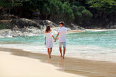 Couple walking on beach together, back view — Stock Photo