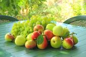 Grapes, apples and pears on a table — Stock Photo