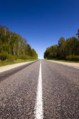 The asphalted road — Stock Photo