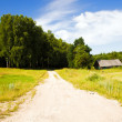 The rural road — Stock Photo #75702773