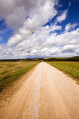 The rural road — Stock Photo