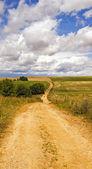 The rural road - — Stok fotoğraf