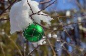 Christmas Winter Scenic — Stockfoto