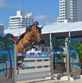 Miami Beach Show Jumping — Stock Photo