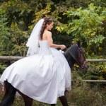 Bride on horse — Stock Photo #53732271