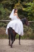 Bride on horse — Stock Photo
