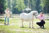Man, meisje en paard — Stockfoto