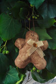 Gingerbread man handmade toy — Stock Photo