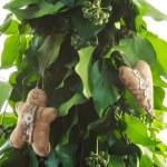 Gingerbread man handmade toy — Stock Photo #58409251