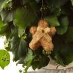 Gingerbread man handmade toy — Stock Photo #58409261