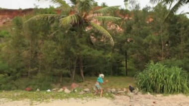 Man with coconut palm tree — Stock Video