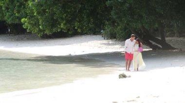 Happy groom and beautiful bride — Stock Video