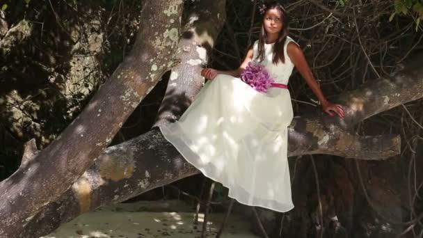 Novia en la boda sentado en el árbol — Vídeo de stock