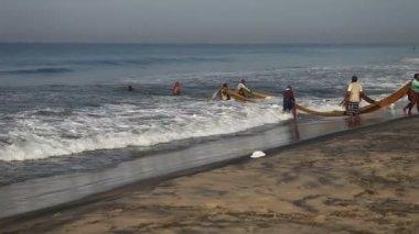 Fishermen pull the network — Stock Video