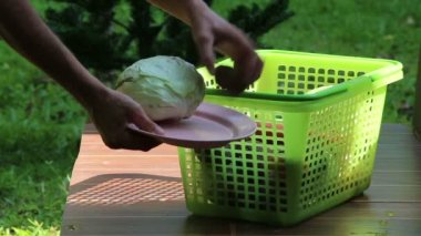Hands put vegetables on plate — Stock Video