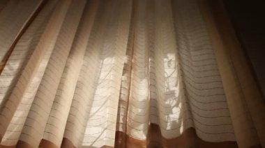 Windy rideaux sur fenêtre — Vidéo
