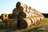 Bales of straw stacked neatly on the field — Stock Photo