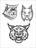 Wild bobcat or lynx mascots — Stock Vector