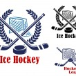 Ice hockey symbol — Stock Vector #53333555