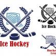 Ice hockey symbol — Stock Vector #53333555