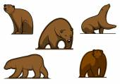 Brown colored bear characters  — ストックベクタ