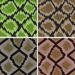 ������, ������: Seamless snake skin patterns