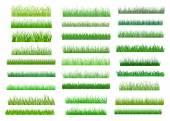 Fresh green spring grass borders — Stok Vektör