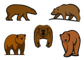 Brown wild bear characters  — Stock Vector