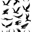 Flying eagle, falcon and hawk vector icons — Stock Vector #55311821