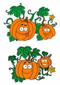 Cartoon pumpkins growing on vines — Stock Vector
