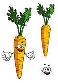Happy cartoon carrot character — Stock Vector