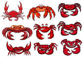 Red cartoon marine crabs set — Stock Vector