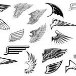Heraldic vintage wings set — Stock Vector #58759019