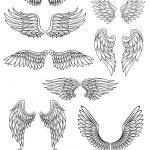 Heraldic bird or angel wings set — Stock Vector #59763313