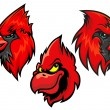 Cardinal bird heads set — Stock Vector #60258503