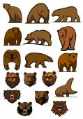Grizzly and brown bear characters — Stock Vector