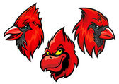 Cardinal bird heads set — Vector de stock