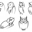 Owl bird icons in doodle sketch outline style — Stock Vector #62641085