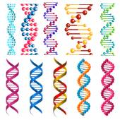 Colorful DNA molecules and cells — Stock Vector