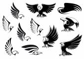 Eagles for logo, tattoo or heraldic design — Stock Vector