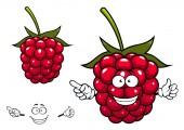 Joyful red raspberry fruit character — Stock Vector