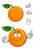 Happy juicy cartoon orange with green leaf — Stock Vector