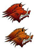 Wild boar mascot with big tusks — Stock Vector