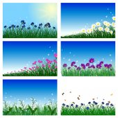 Meadow background set — Stock Vector