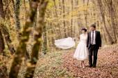 Happy bride and groom walking in the autumn forest — Stock Photo