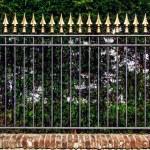 Decorative iron fence — Stock Photo #53800339