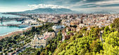 Panoramic view of Malaga city. Andalusia, Spain — Stock Photo
