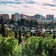 Panorama of Malaga city. Andalusia, Spain — Stock Photo #57884043