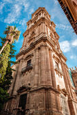 Cathedral in Malaga, Andalusia, Spain — Stock Photo