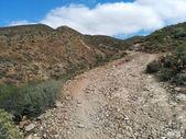 Rocky landscape of Tenerife. Canary Islands. Spain — Stock Photo